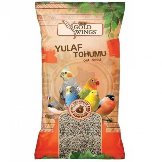 GOLD WINGS YULAF TOHUMU