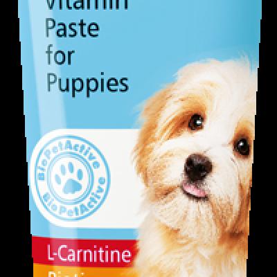VitaliDOG Junior Paste   Yavru Köpekler İçin Vitamin Pasta